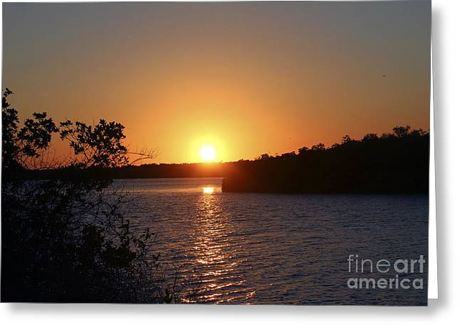 St. Lucie County Greeting Cards - Wildcat Cove Sunset2 Greeting Card by Megan Dirsa-DuBois
