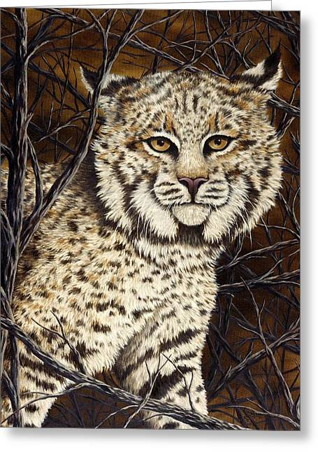 Bobcats Greeting Cards - Wildcat Greeting Card by Rick Bainbridge