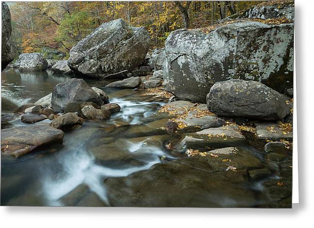 Richland Creek Greeting Cards - Wilderness Autumn Greeting Card by Matthew Parks