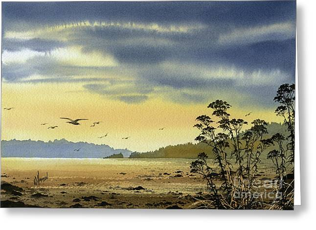 Landscape Framed Prints Greeting Cards - Wilderness Coast Greeting Card by James Williamson