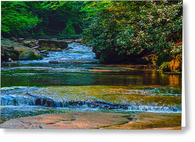 Randolph County Wv Greeting Cards - Wilderness Creek  Greeting Card by John  Hannan