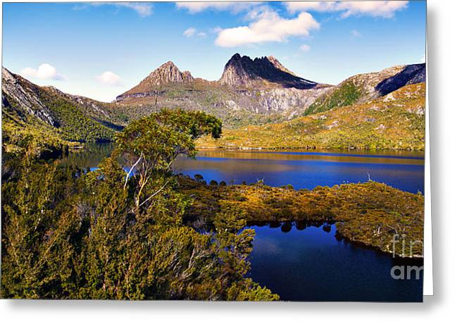 Cradle-mountain Greeting Cards - Wilderness Greeting Card by Phill Petrovic