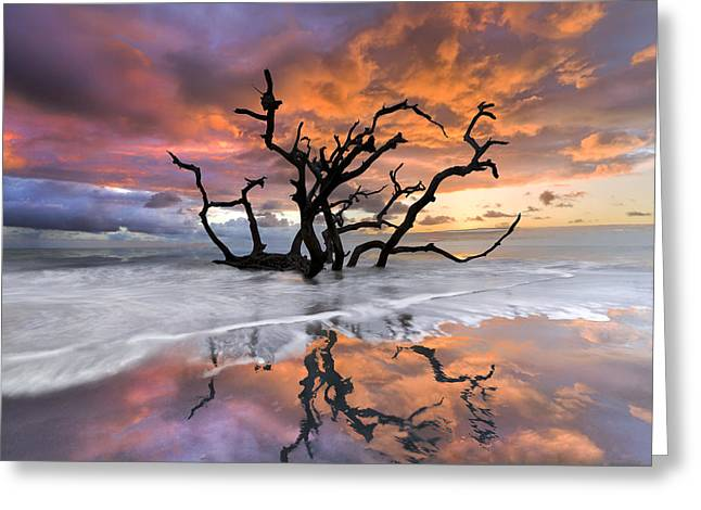 Sunrise On Beach Greeting Cards - Wildfire Greeting Card by Debra and Dave Vanderlaan