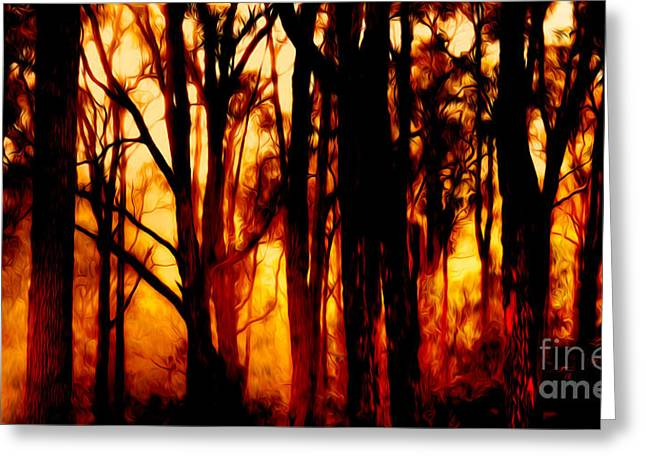 Bushfire Greeting Cards - Wildfire Greeting Card by Phill Petrovic