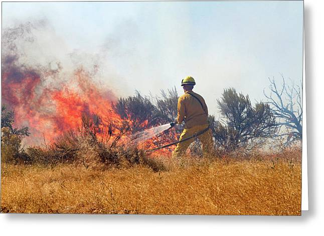 Wildfire South Of The City Of Boise Greeting Card by David R. Frazier
