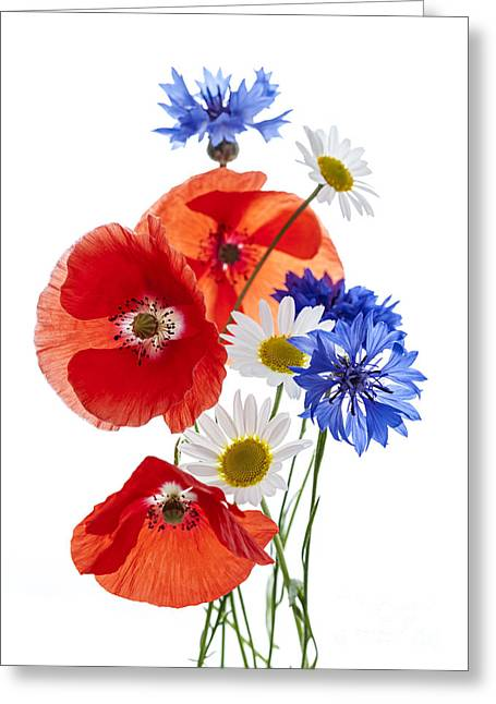 Cutout Greeting Cards - Wildflower arrangement Greeting Card by Elena Elisseeva