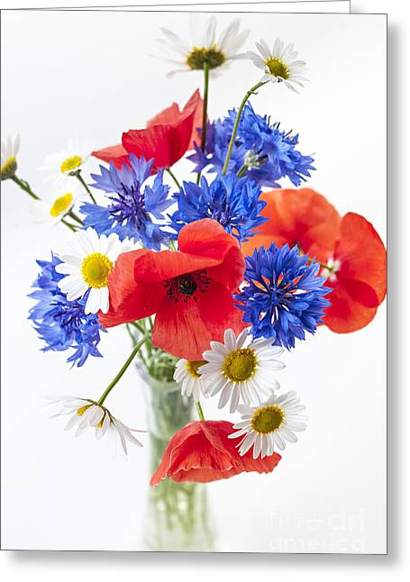 Flower Design Greeting Cards - Wildflower bouquet Greeting Card by Elena Elisseeva