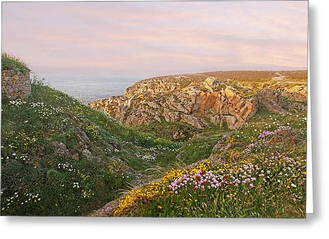 Red Granite Greeting Cards - Wildflower Meadow at Grosnez Greeting Card by Gill Billington