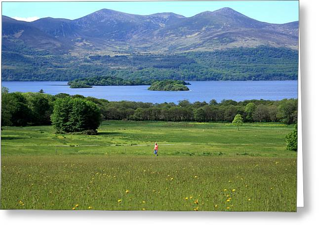Outdoor Life Art Greeting Cards - Wildflower Meadow - Killarney National Park - Ireland Greeting Card by Aidan Moran