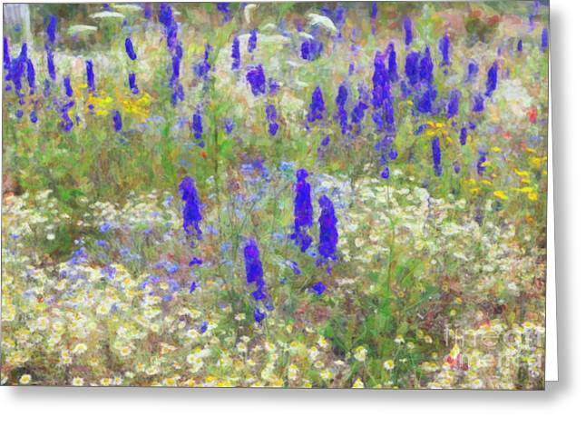 Countryside Digital Greeting Cards - Wildflower Watercolour Greeting Card by Tim Gainey