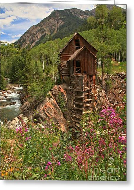 Water Powered Generator Greeting Cards - WIldflowers Along The Crystal Greeting Card by Adam Jewell