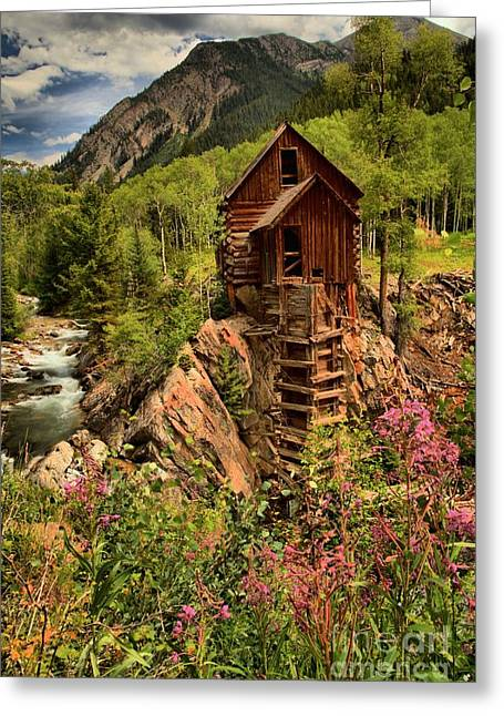 Water Powered Generator Greeting Cards - Wildflowers And Clouds Greeting Card by Adam Jewell