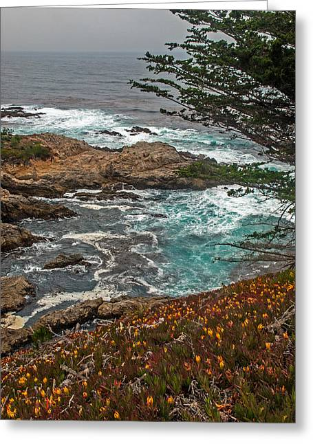 Coast Highway One Greeting Cards - Wildflowers And Emerald Water Along The Pacific Coast Highway Greeting Card by Willie Harper