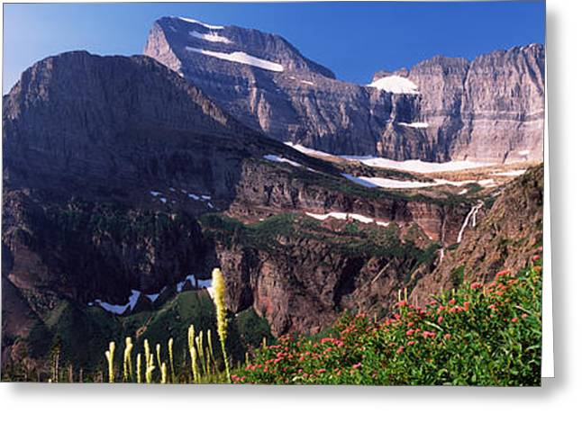 Us Glacier National Park Greeting Cards - Wildflowers With Mountain Range Greeting Card by Panoramic Images