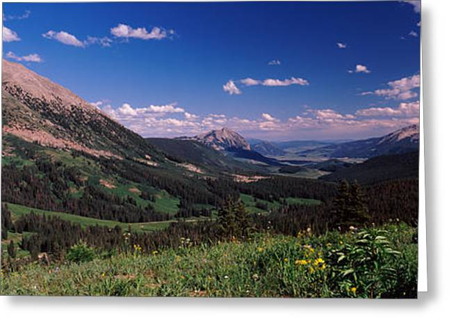 Wildflowers With Mountains Greeting Card by Panoramic Images