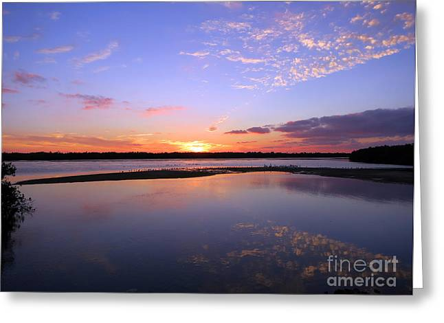 J N Ding Darling National Wildlife Refuge Greeting Cards - Wildlife Drive Sunset Greeting Card by Patricia Januszkiewicz