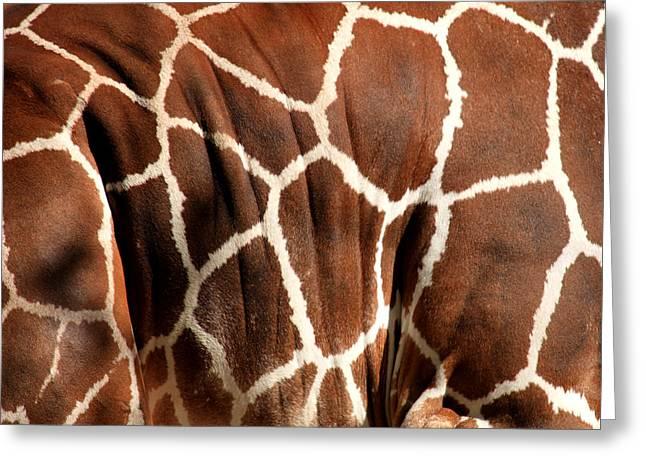 Giraffe Abstracts Greeting Cards - Wildlife Patterns  Greeting Card by Aidan Moran