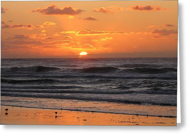 Sandpiper Greeting Cards - Wildwood Beach Here Comes the Sun Greeting Card by David Dehner