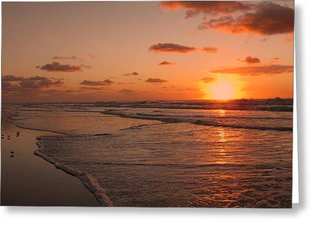 Wildwood Greeting Cards - Wildwood Beach Sunrise II Greeting Card by David Dehner