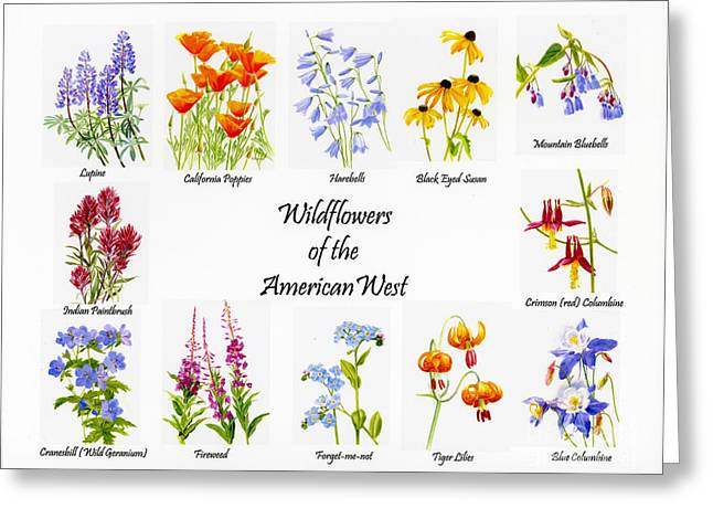 Blue Mountains Red Greeting Cards - Wilflowers of the American West Greeting Card by Sharon Freeman