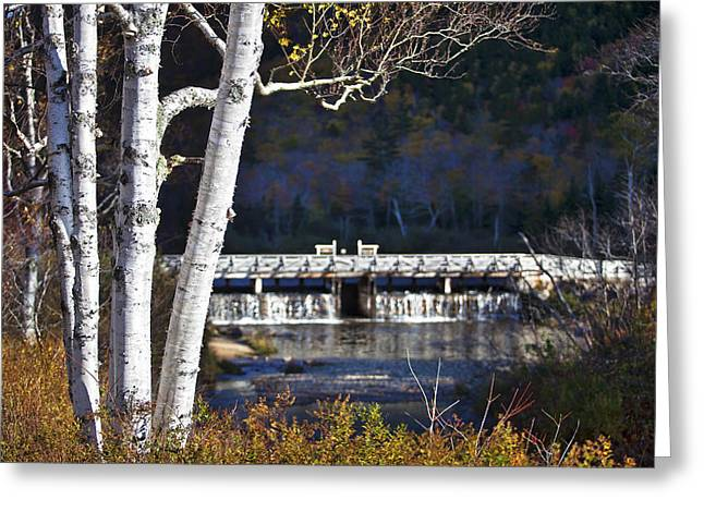 Saco River Greeting Cards - Willey Pond Greeting Card by Eric Gendron