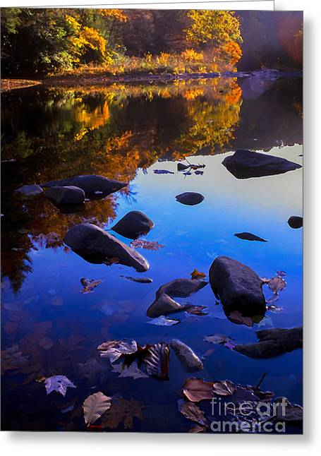 Williams River Greeting Cards - Williams River Autumn Reverie Greeting Card by Thomas R Fletcher