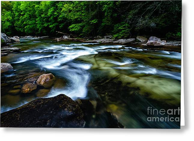 Trout Stream Landscape Greeting Cards - Williams River Downstream View Greeting Card by Thomas R Fletcher
