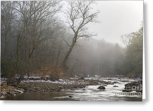 Confluence Greeting Cards - Williams River Fog Confluence Greeting Card by Thomas R Fletcher