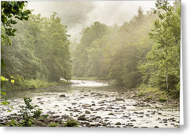 Trout Stream Landscape Greeting Cards - Williams River Summer Mist Greeting Card by Thomas R Fletcher