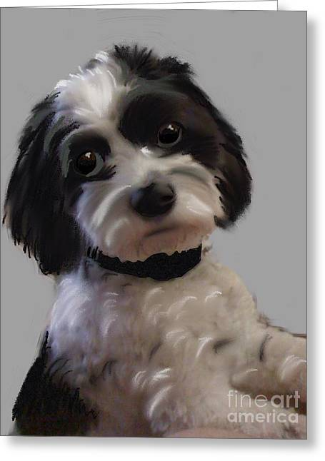 Spaniel Pastels Greeting Cards - Willie  Greeting Card by Craig Nelson