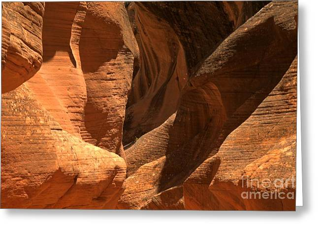 Escalante Greeting Cards - Willis Creek Utah Greeting Card by Adam Jewell