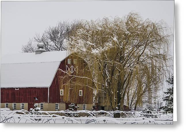 Winter Storm Nemo Greeting Cards - Willow and Barn After Nemo Greeting Card by Deborah Smolinske