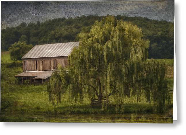 Weeping Greeting Cards - Willow Farm Greeting Card by Kathy Jennings