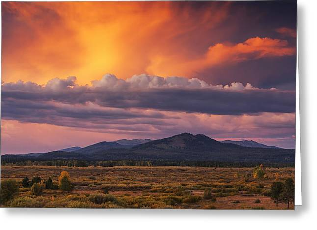 Amazing Greeting Cards - Willow Flats Sunset Greeting Card by Mark Kiver