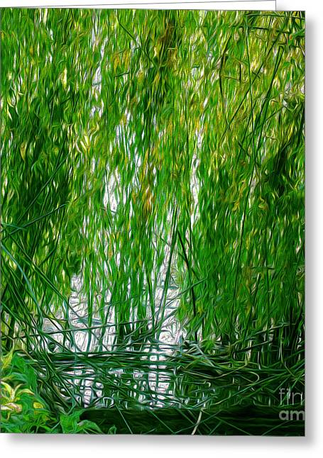 Willow Lake Greeting Cards - Willow Pool Greeting Card by Roselynne Broussard