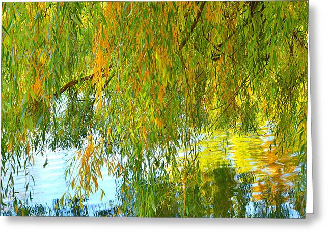 Willow Lake Greeting Cards - Willow Greeting Card by Tim Reaves