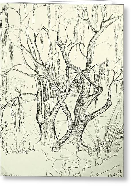 Willow Lake Drawings Greeting Cards - Willows By The Lake Greeting Card by Leanne Seymour