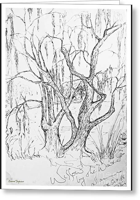 Willow Lake Drawings Greeting Cards - Willows By The Lake - Within Border Greeting Card by Leanne Seymour
