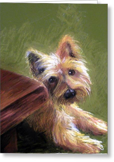 Small Dog Pastels Greeting Cards - Willy the Australian Terrier Greeting Card by Lenore Gaudet
