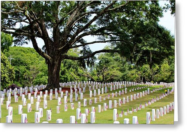 Civil Greeting Cards - Wilmington National Cemetery Greeting Card by Cynthia Guinn