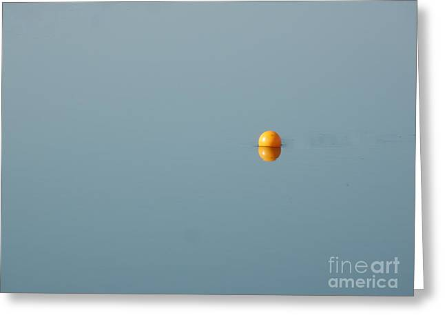 Concept Photographs Greeting Cards - Wilson Greeting Card by Marcia Lee Jones