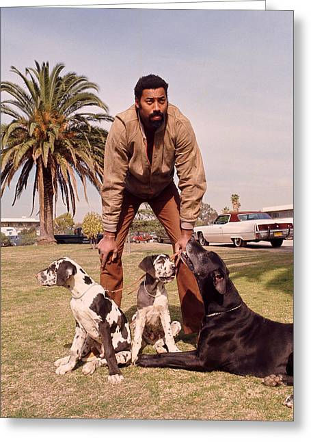 Civilians Greeting Cards - Wilt Chamberlain With Dogs Greeting Card by Retro Images Archive