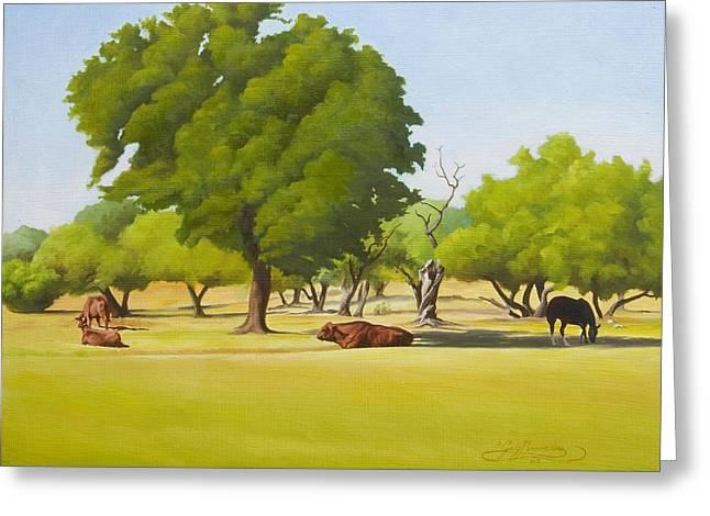Wimberley Greeting Cards - Wimberley Pastoral Greeting Card by Gary  Hernandez