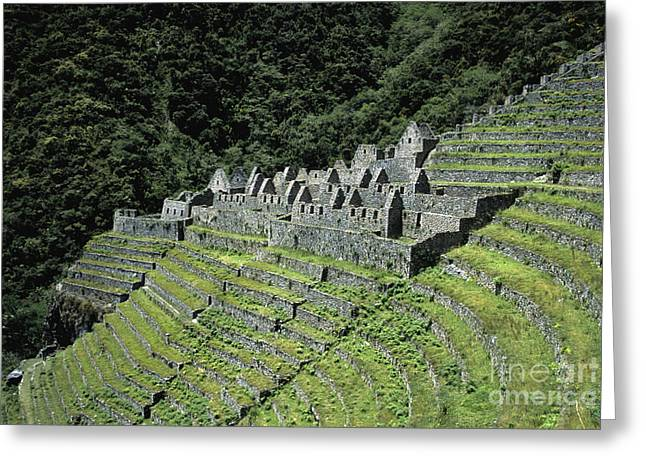 Lost Civilization Greeting Cards - Winay Wayna Inca Trail Peru Greeting Card by James Brunker