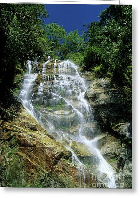 Water Effect Greeting Cards - Winay Wayna waterfall Greeting Card by James Brunker