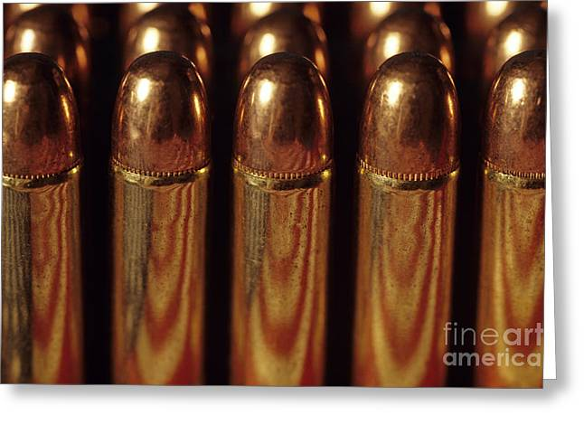 Socialization Greeting Cards - Winchester rifle cartridges Greeting Card by Jim Corwin