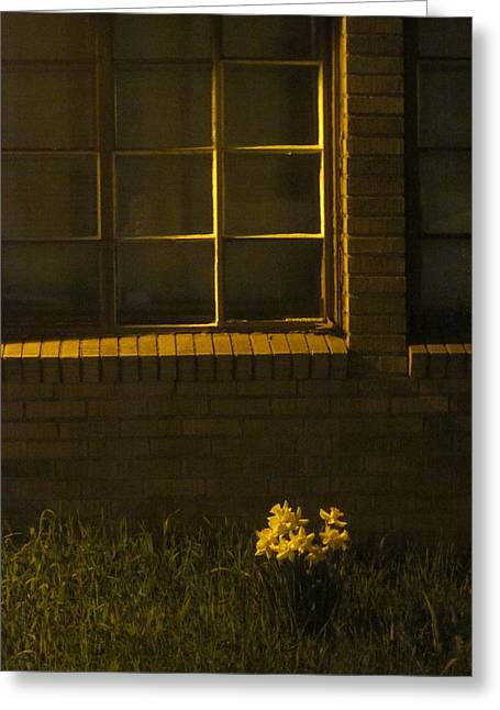 Wind And Window Flower Greeting Card by Guy Ricketts