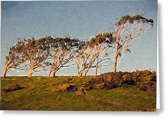 Sonoma Mixed Media Greeting Cards - Wind Factor Greeting Card by John K Woodruff