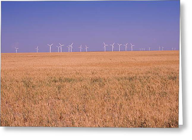 Environmental Conservation Greeting Cards - Wind Farm At Panhandle Area, Texas, Usa Greeting Card by Panoramic Images