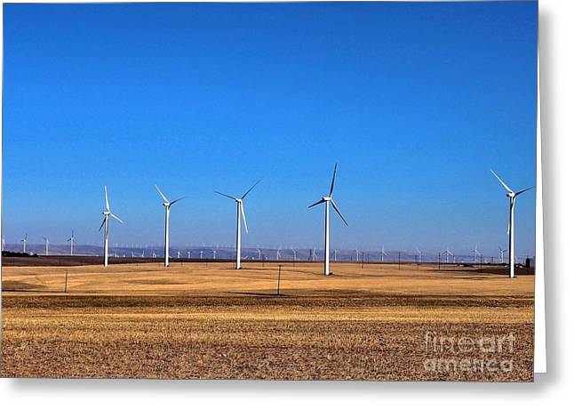 Generators Greeting Cards - Wind Farm in the Wheatfields Greeting Card by   FLJohnson Photography